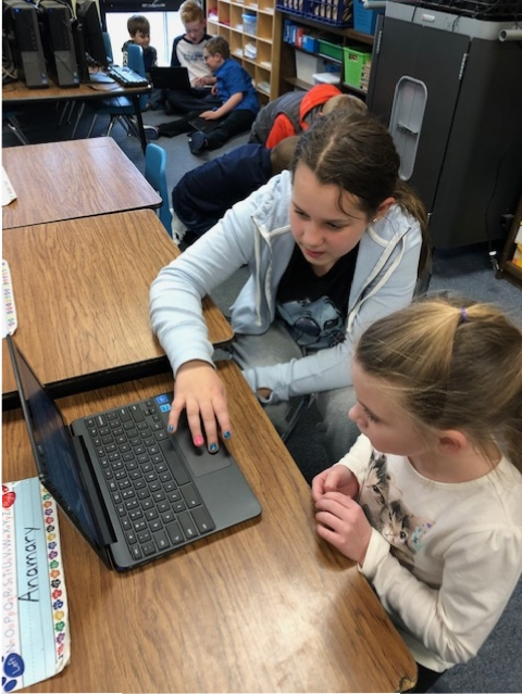 "Mrs. Cruz's first grade class at Bibich enjoyed making decisions about the direction of the stories created by Miss Snow's fourth grade class (with the help of Miss Moore) in the ""Choose Your Own Adventure"" using Google slides."